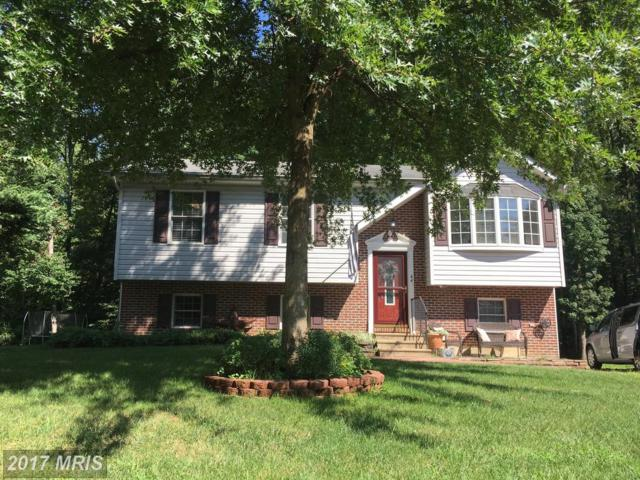 44 Burrwood Court, North East, MD 21901 (#CC10036264) :: Pearson Smith Realty