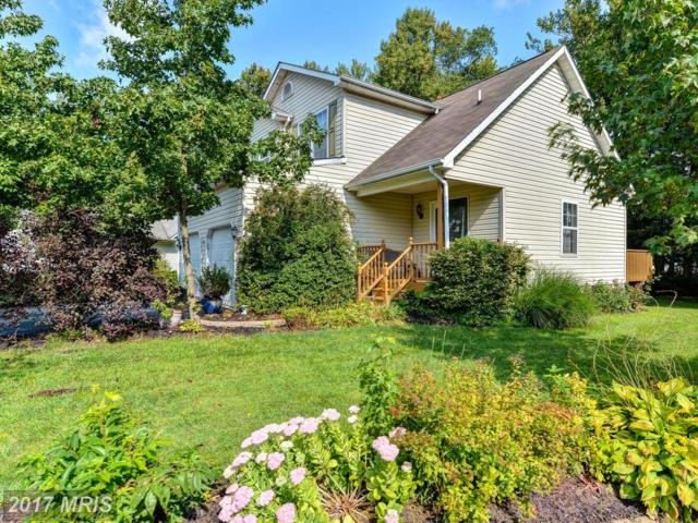 8 Kings Court, Elkton, MD 21921 (#CC10052240) :: Pearson Smith Realty