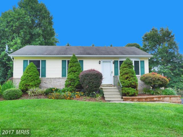 417 Gray Mount Circle, Elkton, MD 21921 (#CC10052752) :: Pearson Smith Realty