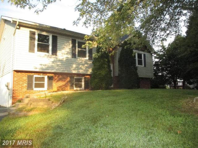108 White Pine Circle, Elkton, MD 21921 (#CC10055088) :: LoCoMusings