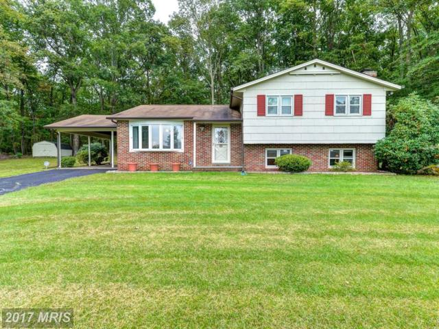 North East, MD 21901 :: Pearson Smith Realty
