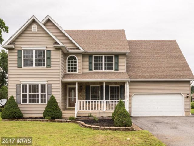 12 Radcliffe Court, Elkton, MD 21921 (#CC10059074) :: Pearson Smith Realty