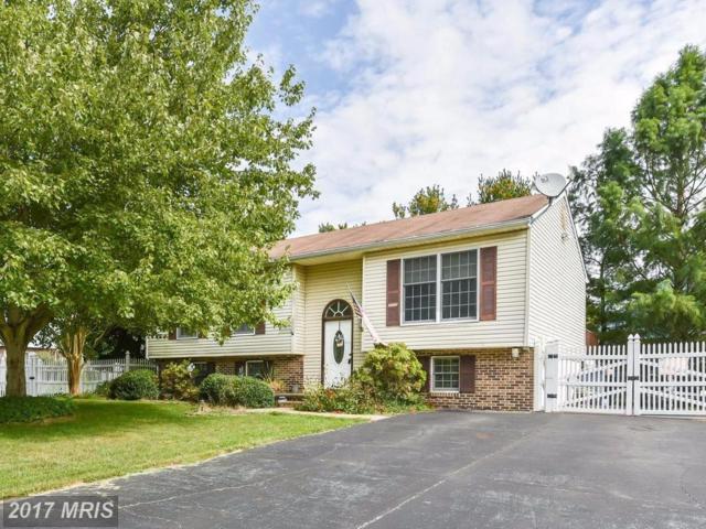 42 Winchester Drive, Elkton, MD 21921 (#CC10061822) :: Pearson Smith Realty