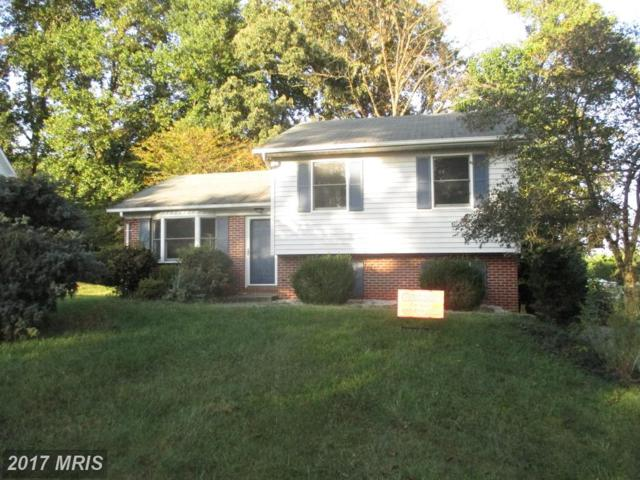15 Sandy Run Lane, Elkton, MD 21921 (#CC10064954) :: ExecuHome Realty