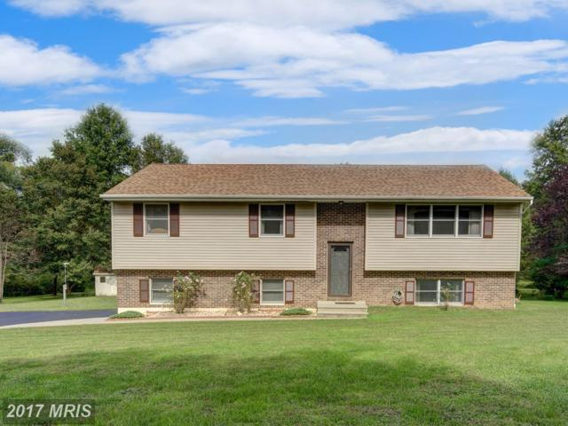 65 Plum Point Road, Elkton, MD 21921 (#CC10065212) :: ExecuHome Realty