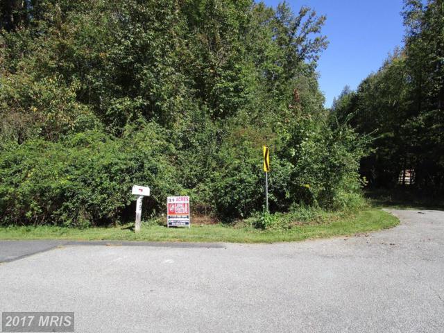 103 Lee Drive, Elkton, MD 21921 (#CC10072320) :: CORE Maryland LLC