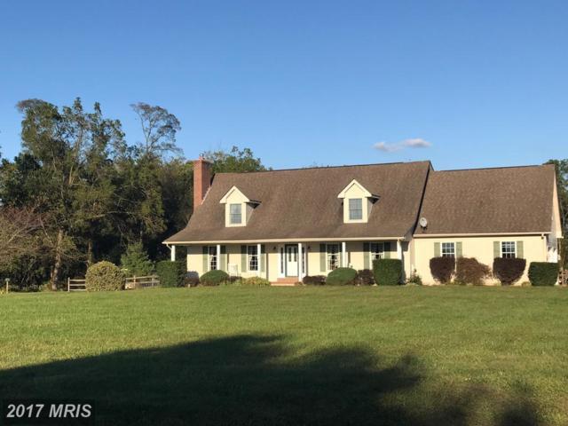 99 Horseshoe Circle, Warwick, MD 21912 (#CC10095613) :: CORE Maryland LLC