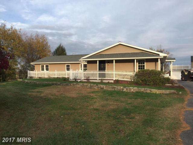 2832 Jacob Tome Memorial Highway, Colora, MD 21917 (#CC10097689) :: Pearson Smith Realty