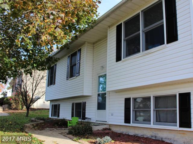 113 Cooper Street, Rising Sun, MD 21911 (#CC10098942) :: Pearson Smith Realty