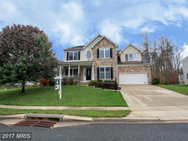 135 Thomas Jefferson Terrace, Elkton, MD 21921 (#CC10099349) :: Pearson Smith Realty
