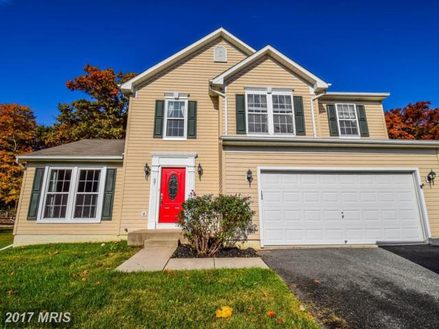 57 Ironoak Court, North East, MD 21901 (#CC10099841) :: Pearson Smith Realty