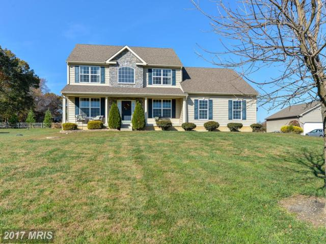 71 Sunburst Drive, Elkton, MD 21921 (#CC10104943) :: ExecuHome Realty