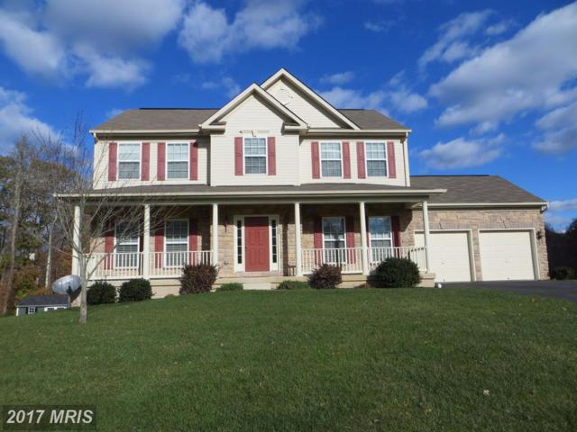 140 Flintstone Drive, North East, MD 21901 (#CC10107410) :: Pearson Smith Realty