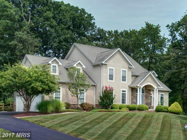 51 Lake Forest Drive, Elkton, MD 21921 (#CC10114779) :: Pearson Smith Realty