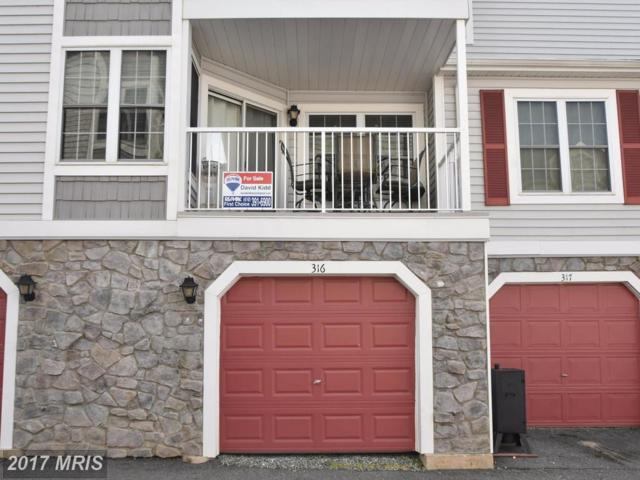 316 Rowland Drive #316, Port Deposit, MD 21904 (#CC10118253) :: Pearson Smith Realty