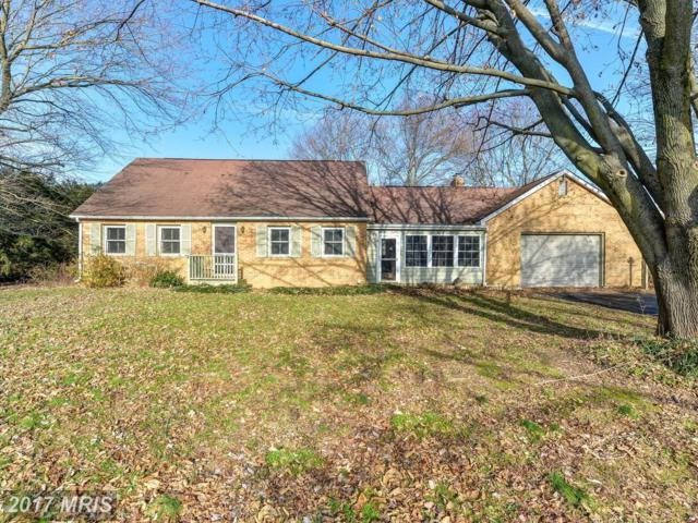 313 Mcgrady Road, Rising Sun, MD 21911 (#CC10123979) :: Pearson Smith Realty