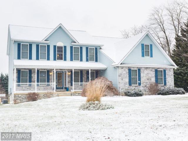 7 Naylor Blue Court, Port Deposit, MD 21904 (#CC10126317) :: Pearson Smith Realty