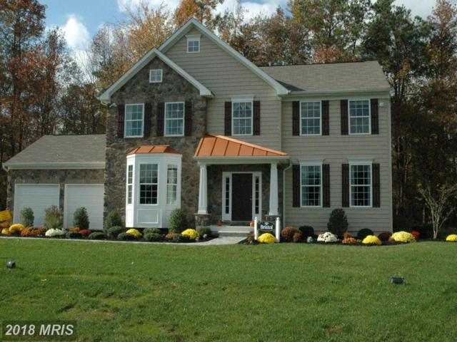 2 Stanfield Drive, Elkton, MD 21921 (#CC10135113) :: Pearson Smith Realty