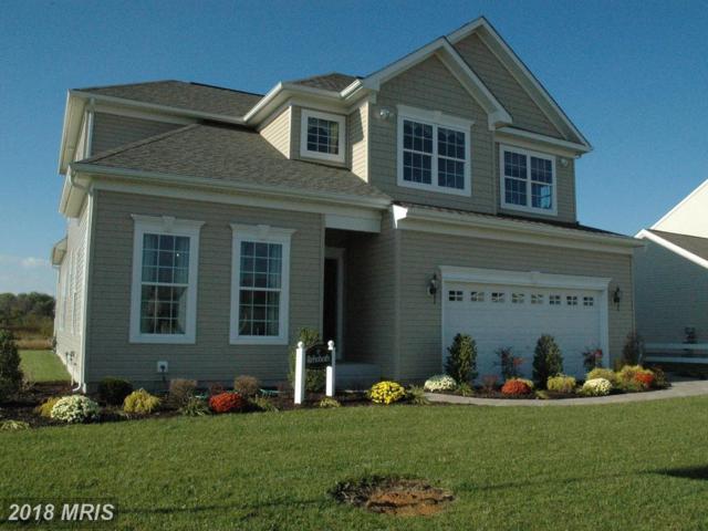 12 Antego Drive, Elkton, MD 21921 (#CC10135158) :: Pearson Smith Realty