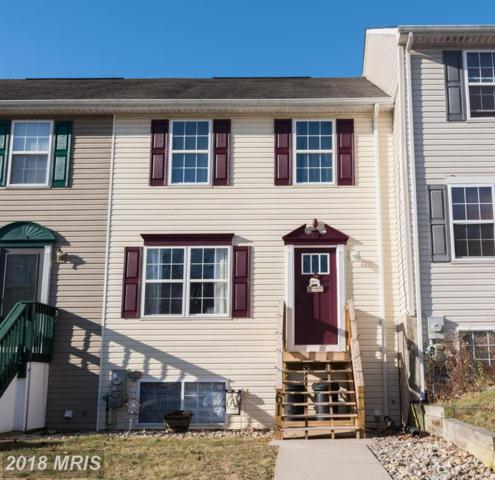 61 Hickory Drive, North East, MD 21901 (#CC10135355) :: Pearson Smith Realty