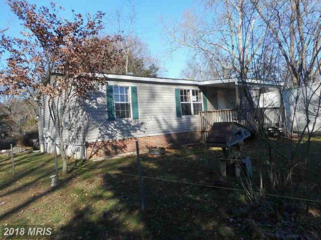 9 Sunday Drive, Charlestown, MD 21914 (#CC10136250) :: Pearson Smith Realty