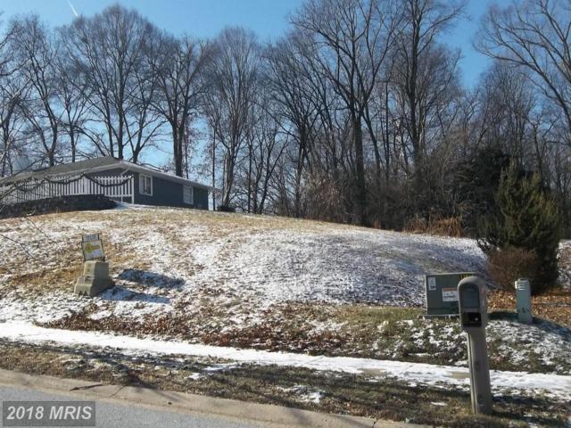 Harrington Drive, Rising Sun, MD 21911 (#CC10140253) :: CR of Maryland