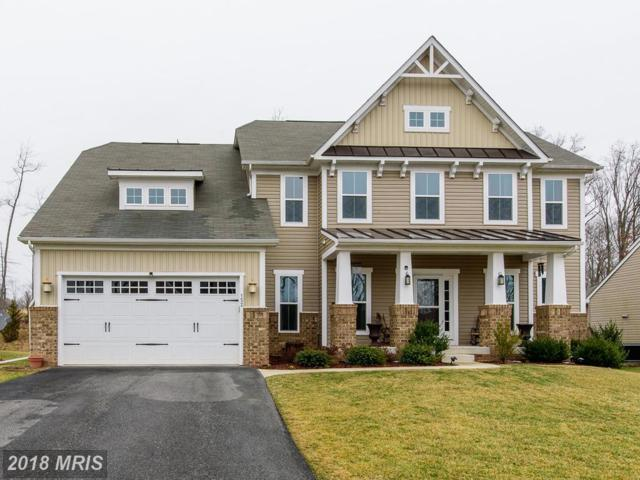 152 Cool Springs Road, North East, MD 21901 (#CC10161055) :: The Bob & Ronna Group