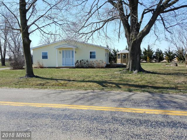 65 Fingerboard Schoolhouse Road, Earleville, MD 21919 (#CC10185179) :: CR of Maryland