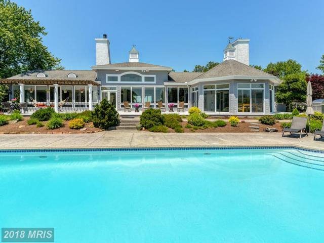 260 Osprey Cove Lane, North East, MD 21901 (#CC10186758) :: The Sky Group