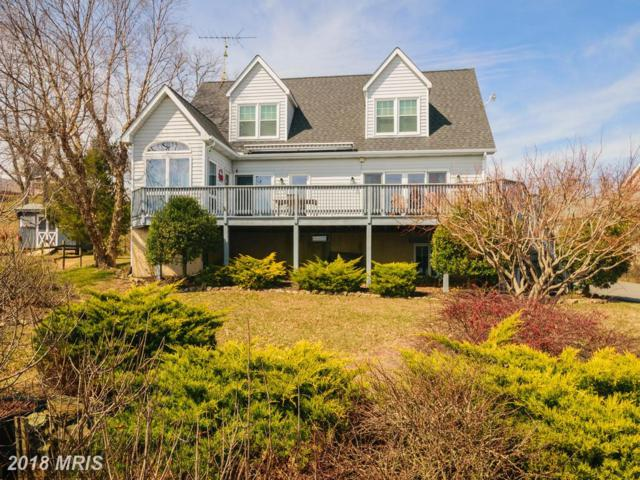 116 Cliffview Drive, North East, MD 21901 (#CC10189076) :: Keller Williams Pat Hiban Real Estate Group