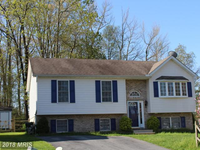 7 Wales Court, Elkton, MD 21921 (#CC10217709) :: The Gus Anthony Team