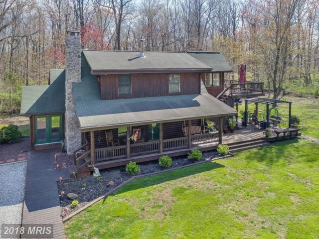 94 Pinewood Road, Earleville, MD 21919 (#CC10217971) :: ExecuHome Realty