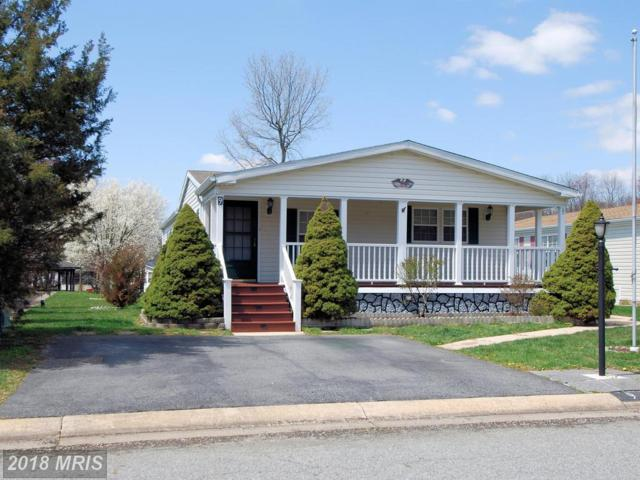 9 Raven Court, Elkton, MD 21921 (#CC10218210) :: ExecuHome Realty