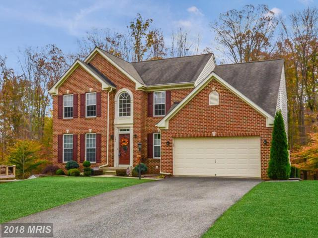 164 Bethel Springs Drive, North East, MD 21901 (#CC10244333) :: AJ Team Realty