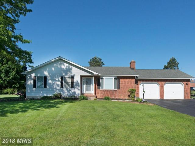 546 Hopewell Road, Rising Sun, MD 21911 (#CC10256003) :: The Gus Anthony Team