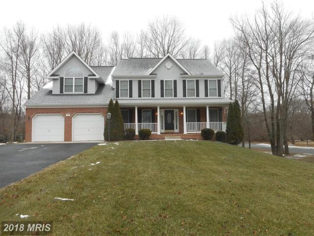 10 Theresa Lane, Charlestown, MD 21914 (#CC10271569) :: ExecuHome Realty
