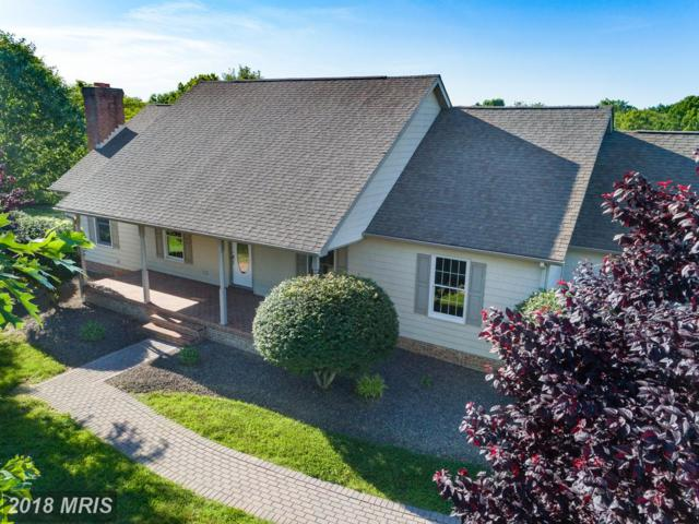 67 Court House Point Road, Chesapeake City, MD 21915 (#CC10271998) :: ExecuHome Realty