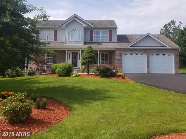 36 Oldfield Acres Drive, Elkton, MD 21921 (#CC10275258) :: The Miller Team