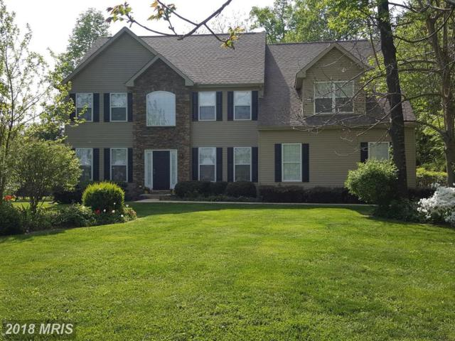 49 Canterbury Court, Colora, MD 21917 (#CC10281680) :: Charis Realty Group