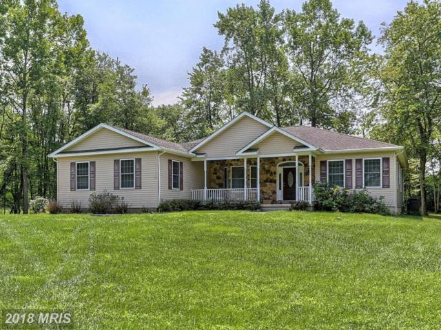 214 Creek Drive, Elkton, MD 21921 (#CC10323566) :: ExecuHome Realty