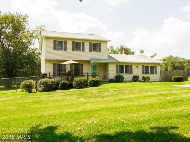 116 Union Church Road, Elkton, MD 21921 (#CC10323585) :: ExecuHome Realty