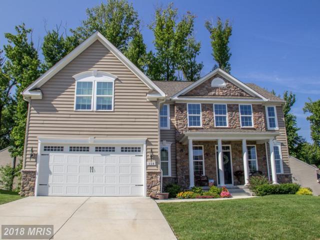 158 Thomas Jefferson Terrace, Elkton, MD 21921 (#CC10323601) :: Colgan Real Estate
