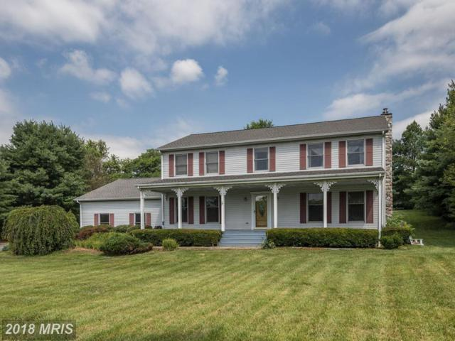 15 Old Line Court, Elkton, MD 21921 (#CC10323686) :: ExecuHome Realty