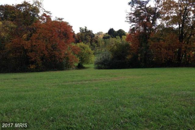 Orchard Hill Lane, Elkton, MD 21921 (#CC9820930) :: LoCoMusings