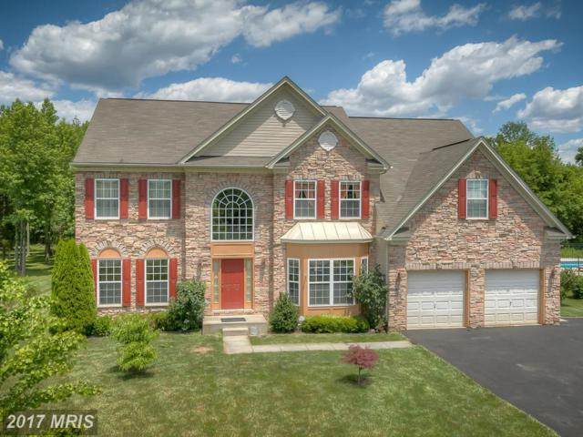 21 Gina Marie Lane, Elkton, MD 21921 (#CC9837529) :: Pearson Smith Realty