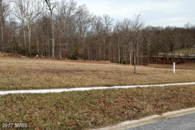 Lot 1 Autumn Woods Drive, Elkton, MD 21921 (#CC9881505) :: Pearson Smith Realty