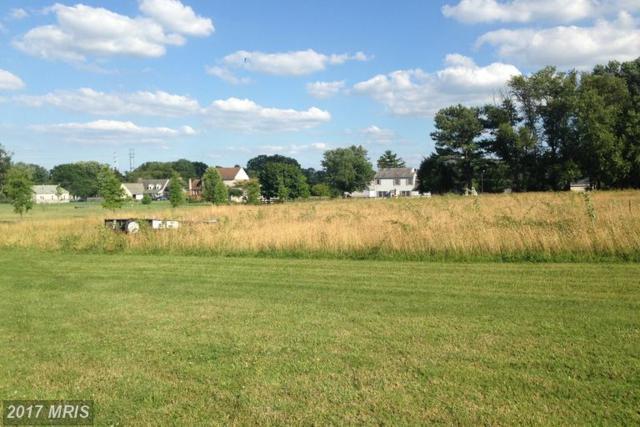 Canal Estates Drive, Elkton, MD 21921 (#CC9980160) :: LoCoMusings