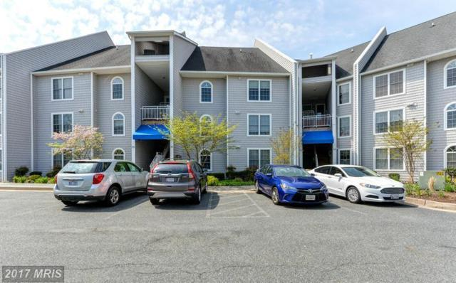 37 Owens Landing Court 37A, Perryville, MD 21903 (#CC9982126) :: LoCoMusings