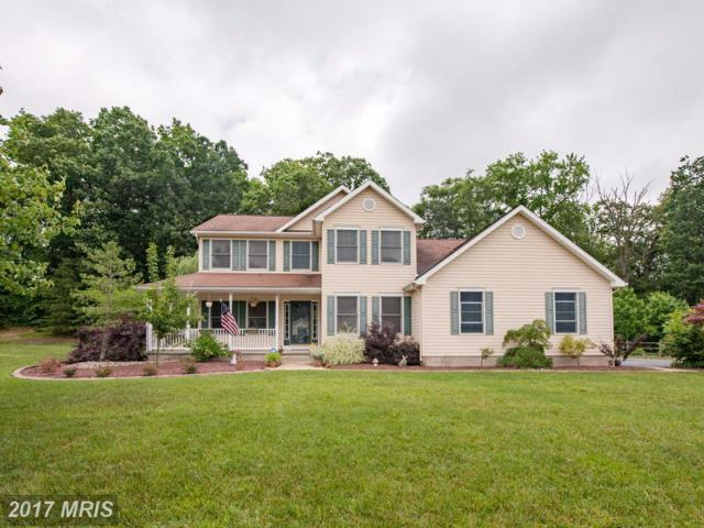 85 Watson Way, North East, MD 21901 (#CC9987323) :: Pearson Smith Realty