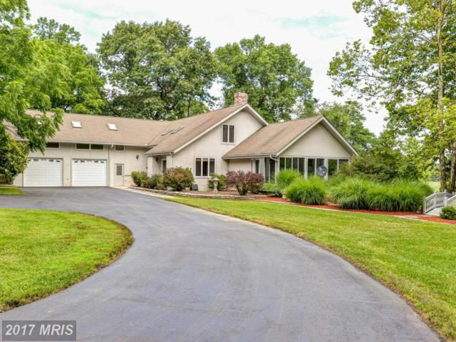 364 Walnut Lane, North East, MD 21901 (#CC9992109) :: ExecuHome Realty